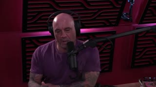 Joe Rogan Says He Would Support Andrew Yang for President