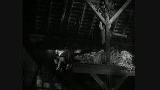 Lassie-Die Eule